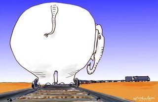 White-elephant-450