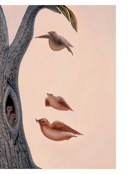 Fine-art-birds